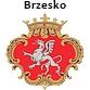 logo_brzesko